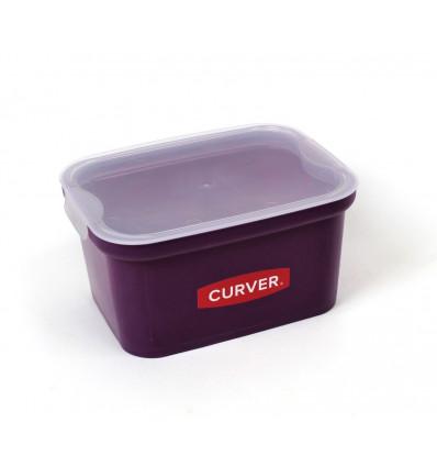 Plastikinė daiktadėžė su dangčiu CURVER