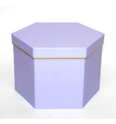 Popierinė dovanų dėžutė