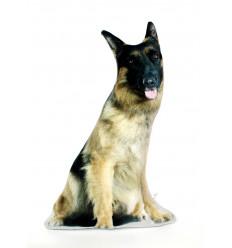 Dekoratyvinė pagalvėlė - šuo